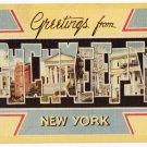 POUGHKEEPSIE, New York large letter linen postcard Dexter