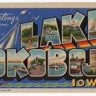 LAKE OKOBOJI, Iowa large letter linen postcard Teich
