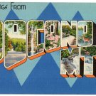 POCONO MTS., Pennsylvania large letter linen postcard Colourpicture