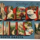 BLACK HILLS, South Dakota large letter linen postcard Metopolitan