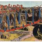 THE BADLANDS, South Dakota large letter linen postcard Metropolitan