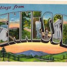 TENNESSEE large letter linen postcard Eastern Photo