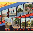 CEDAR POINT, Ohio large letter linen postcard Teich