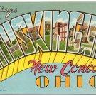 MUSKINGUM, Ohio large letter postcard Teich