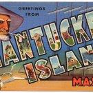 NANTUCKET ISLAND, Massachusetts large letter linen postcard Teich