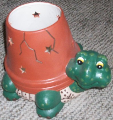 """Turtle with Star-holed, """"cracked"""" planter shell"""