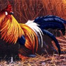 RARE JEREMY PAUL COUNTRY FARM ROOSTER CREWEL EMBROIDERY KIT COCKEREL