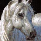 MAGNIFICENT STALLION PERSIS CLAYTON WEIRS NEEDLEPOINT KIT WHITE HORSE