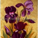 RARE MYERS FRENCH COUNTRY DARK PURPLE BEARDED IRISES NEEDLEPOINT KIT