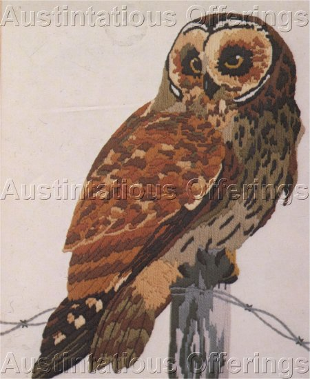 RARE BIRD OF PREY CREWEL EMBROIDERY KIT SHORT EARED OWL