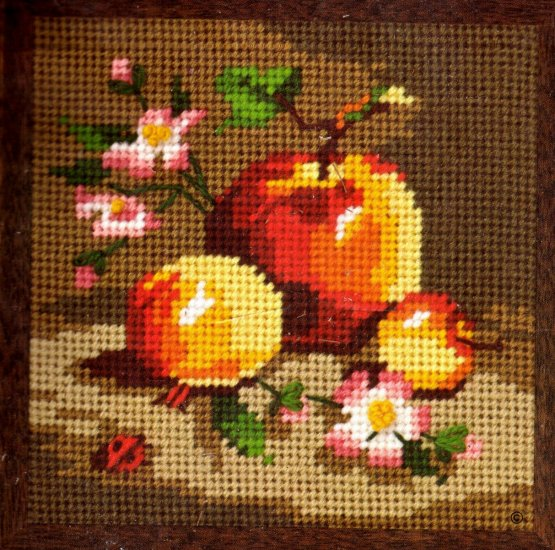 RIENSTRA  BLOSSOMS AND APPLES JIFFY NEEDLEPOINT KIT