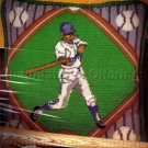 RARE BASEBALL SPORTS FAN NEEDLEPOINT PILLOW KIT HOMERUN DIAMOND