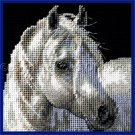 MAGNIFICENT STALLION PERSIS CLAYTON WEIRS NEEDLEPOINT KIT WHITE HORSE SMALL VERSION