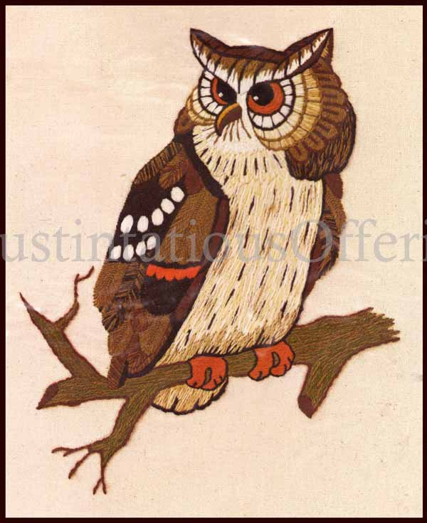 Rare Eva Keeler Bird Of Prey Crewel Embroidery Kit Horned Owl
