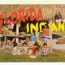 Florida Seminole Indians chrome Postcard covered home