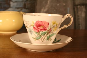 Regency English Bone China Tea Cup and Saucer Pink Rose Buds Afternoon Tea Time