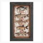 Freshwater Fish Shadow Box 33936