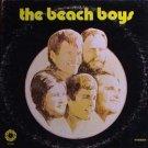 the beach boys / spb-4021