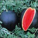 Blacktail Mountain Watermelon Seeds (My favorite)- 30
