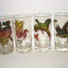 Vintage SET of 4 WILDLIFE GAME BIRD DRINK TUMBLER GLASSES Great for Hunting
