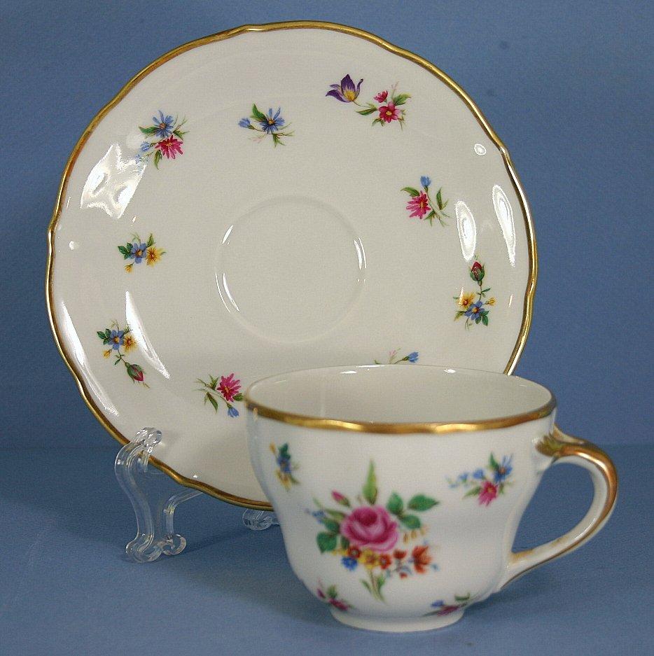 Oscar Schaller - Winterling Meissen Gardens Flat Cup & Saucer Set