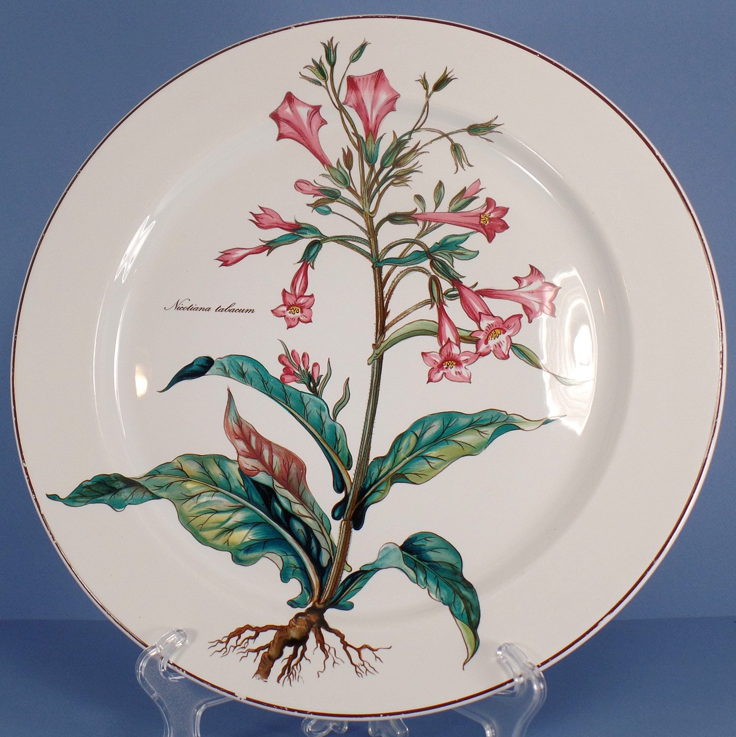 Villeroy & Boch Botanica Chop Plate (Round Platter) 12 Inch - Nicotiana Tabacum -30% off