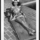 "NOEL NEILL ""LOIS LANE"" SWIMSUIT POSE NEW REPRINT  5X7   #1"