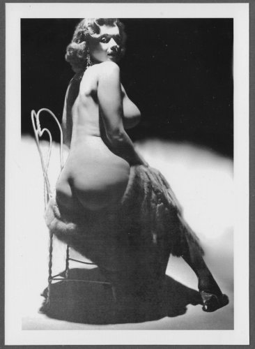 STRIPPER DORIAN DENNIS TOPLESS NUDE BIG BREASTS BARE BOTTOM POSE NEW REPRINT PHOTO 5X7 DD-45