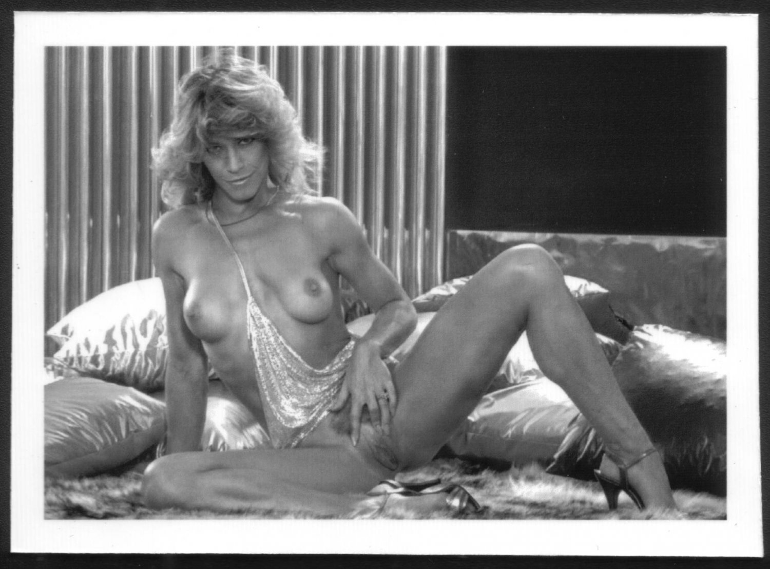 Marilyn chambers sex and the girl next door