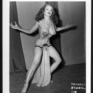 STRIPPER TEMPEST STORM VINTAGE IRVING KLAW PHOTO 4X5 #118
