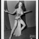 STRIPPER TEMPEST STORM VINTAGE IRVING KLAW PHOTO 4X5 #118