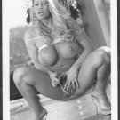 HOT BLONDE BABE NUDE BIG BOOBS SHAVED PUSSY POSE NEW REPRINT PHOTO 5 X 7  #24N
