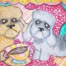 Do Dandie Dinmont Terriers Have Coffee?