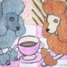 Do Miniature Poodles Have Coffee?