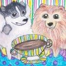 Do Pomeranians Have Coffee?