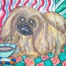 Pekingese Coffee Break