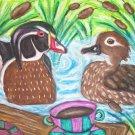 Do Wood Ducks Have Coffee Duck Art Giclee Print