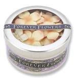 Forever Flowers - Peach Hydrangeas
