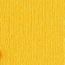 Bazzill Basics Bling Cardstock - Bling
