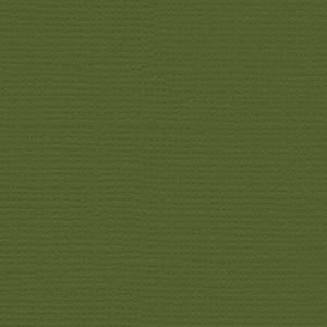 Bazzill Monochromatic Nixon 8.5x11