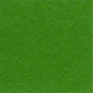 Bazzill Prismatic Classic Yellowgreen T19.5377
