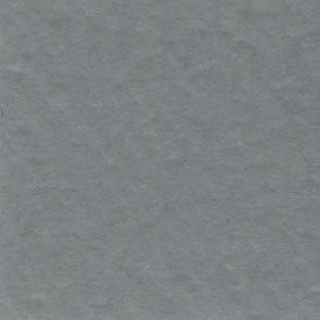 Bazzill Prismatic Gray T19.10141