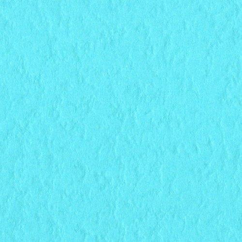 Bazzill Prismatic Vibrant Teal T19.7020