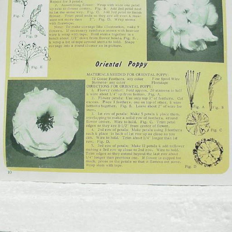 Feather Flowers And Arrangements Craft Booklet Hazel Pearson