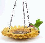 Hummingbird In Sunflower Bird Feeder