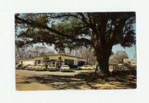 Merry Acres Restaurant, Albany, Georgia Postcard 1960s
