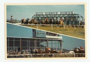 Blue Ribbon Downs Sallisaw Oklahoma Postcard