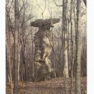 Jug Rock Shoals Indiana Postcard