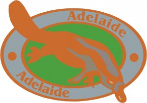 Adelaide Passport Style Wall Graphic