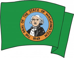 Washington State Flag Wall Decal